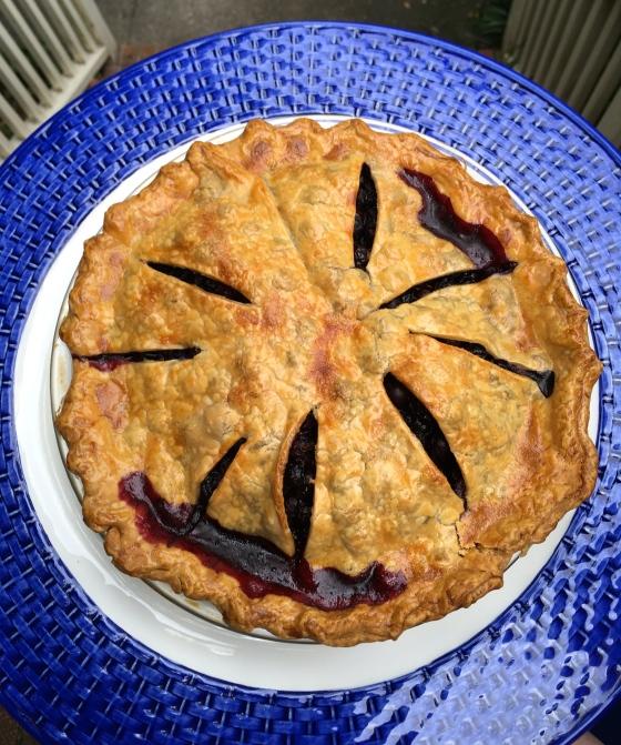 Dorothy's Blueberry pie